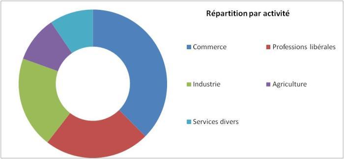 Quelles sont les activités des indépendants en Belgique : le commerce, les professions libérales, l'industrie, l'agriculture et les services divers