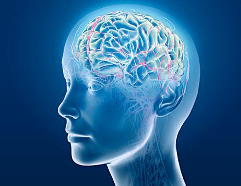 Comment le tabac agit-il sur notre cerveau