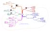 Mind mapping et recherche d'emploi