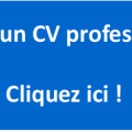 Besoin d'un CV professionnel ?