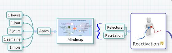 Réactivez votre mémoire en révisant régulièrement votre carte mentale XMind