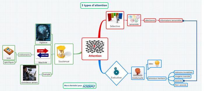 Mindmap réalisée avec le logiciel gratuit de mindmapping XMind - utilisation des couleurs, des images, etc.