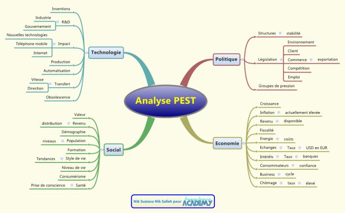 Carte mentale illustrant les 4 dimensions de l'analyse PEST, plus politique que SWOT