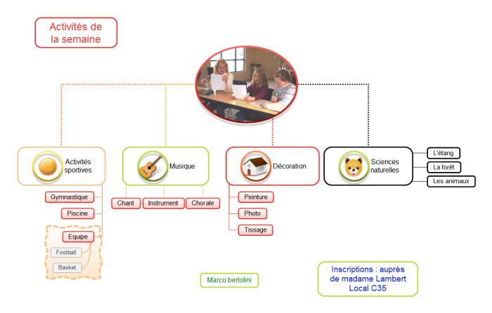 Essai d'une structure de type organigramme dans MindMaple