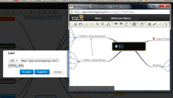 Ouverture d'une carte secondaire dans une nouvelle fenêtre avec Wisemapping