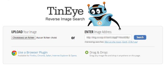 Capture d'écran de l'entrée d'une url d'image dans Tineye