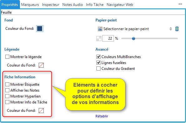 Fiche information dans XMind 7 : cases à cocher pour déterminer quelles informations vont s'afficher