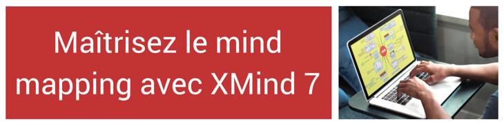 Maîtrisez les principes du mind mapping avec cette autoformation au logiciel XMind 7 proposée en ligne par marco bertolini