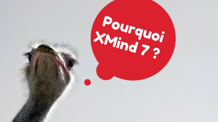 Pourquoi avoir choisi XMind 7 comme logiciel de mindmapping pour cette formation en ligne ?