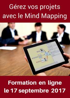 Formation en ligne : boostez votre efficacité avec le mind mapping